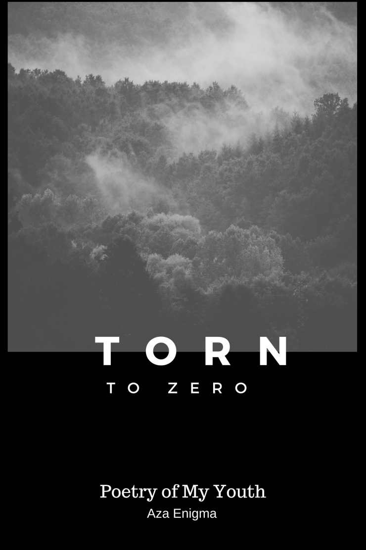 Torn to Zero Cover